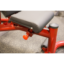 Atlas do ćwiczeń na wolne obciążenia Body-Solid GLGS100P4 czerwony Body-Solid - 25
