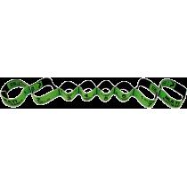 Elastyczna taśma do ćwiczeń Elastiband® Multi 10kg | długość 110cm | zielona Sveltus - 4 | klubfitness.pl