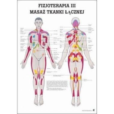 Anatomia człowieka MASAŻ TKANKI ŁĄCZNEJ poster 70x100cm język polski,producent: RUDIGER ANATOMIE, photo: 1
