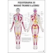 Anatomia człowieka MASAŻ TKANKI ŁĄCZNEJ poster 70x100cm język polski,producent: Rudiger Anatomie, zdjecie photo: 1 | klubfitness