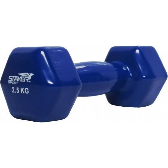 Hantla fitness winylowa Stayer Sport Hex | 2,5kg,producent: Stayer Sport, zdjecie photo: 1 | online shop klubfitness.pl | sprzęt