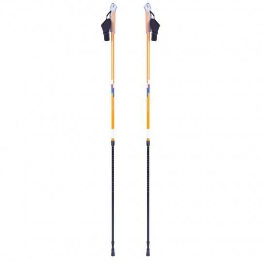 Kije Nordic Walking INSPORTLINE Potosi 2 sekcyjne z pokrowcem,producent: Insportline, zdjecie photo: 1 | online shop klubfitness